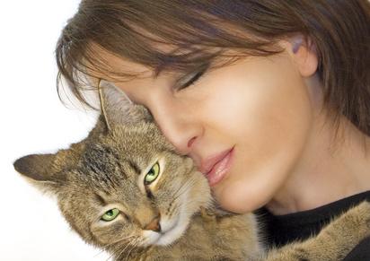 toxoplasmose - Toxoplasmose: O que o Gato tem a ver com isso?